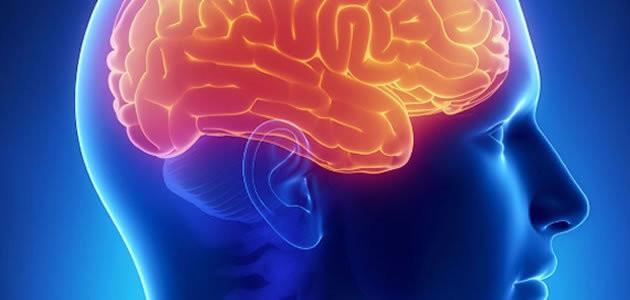 r-630-300-q-90-saiba-o-que-acontece-com-o-cerebro-durante-a-hipnose-20c85989-294e-4552-aa1e-1b7ad5bb87af